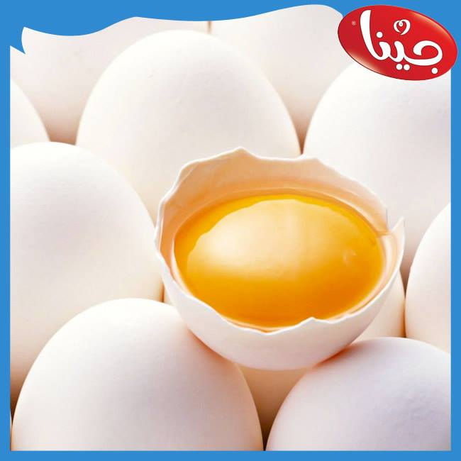 Eggs raises cholesterol in the blood